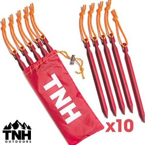 Tent Stakes & Bag
