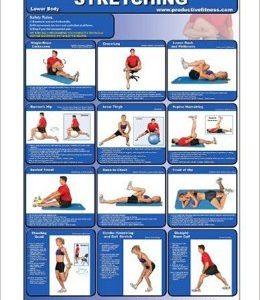 How to Stretch - Improve Flexibility