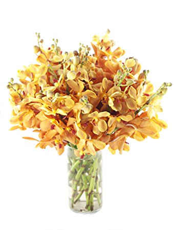 Gold-touched Mokara Orchid Bouquet