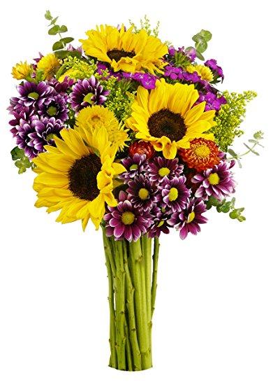 Benchmark Bouquets Flowering Fields