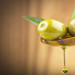 Olive Oil: Laudable In Every Drop