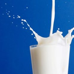 Estrogens In Cow's Milk Does Not Affect Reproductive Health