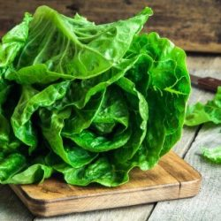 Romaine Lettuce: Highly Nutritious Super Food