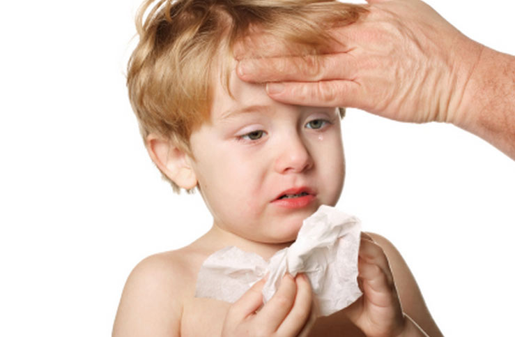 Hand-Foot-Mouth Disease: an Infectious Disease