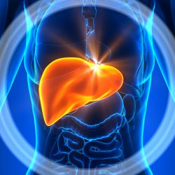 Non Alcoholic Fatty Liver Disease: Are You At Risk?