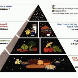 USDA Food Guide Pyramid