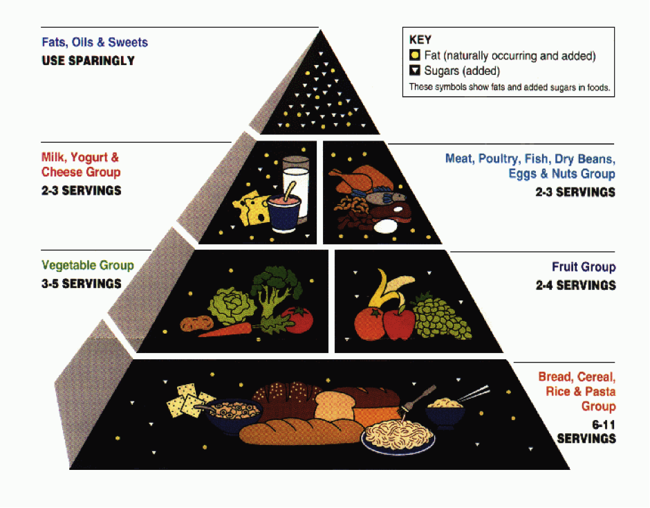 Usda food guide pyramid women fitness the pyramid places foods into six groups showing how many servings for each group every individual should eat each day forumfinder Images