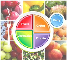 USDA unveils MyPlate as the new food icon