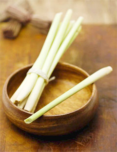 Lemongrass : A Multi Beneficial Herb