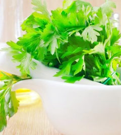 Parsley: An Unappreciated Herb