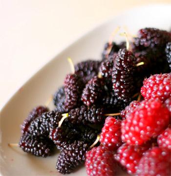 Health Benefits Of Loganberries