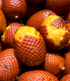 Aguaje: The Miracle Fruit for Women