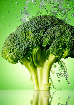 Top 10 Reasons You Should Eat Broccoli