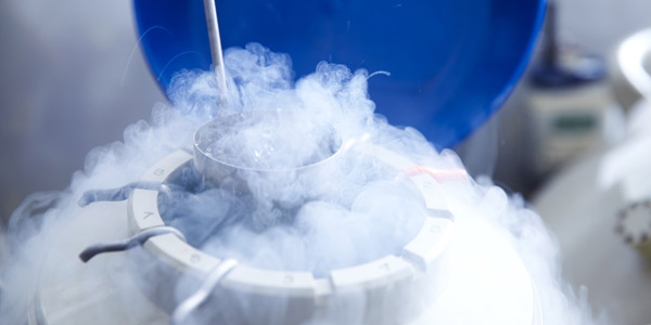 Egg Freezing: Latest Fertility Trend Worldwide