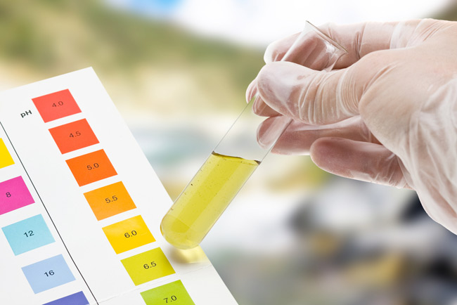 Drug Tests and Their Reliability