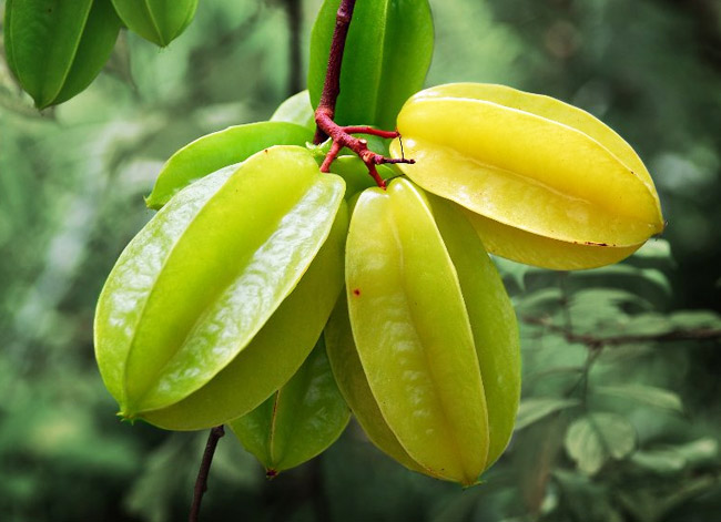 Health Benefits of Rarest and Exotic fruits of the world