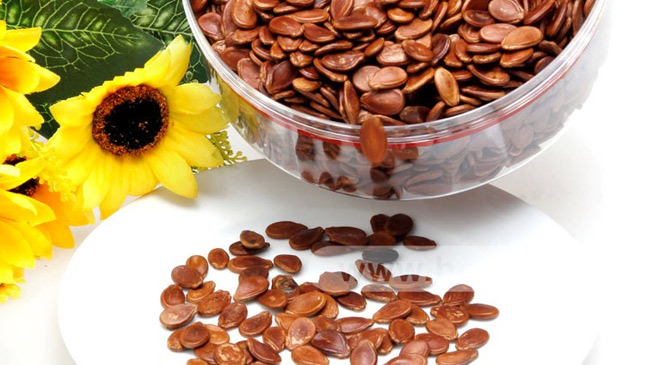 Top 10 a-must Healthy Seeds in your diet