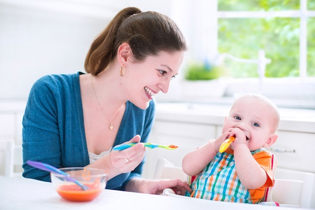 Solid Food Options for Your Little One