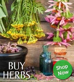 WF Herbs Store