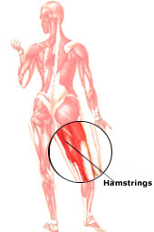 Working the Hamstring