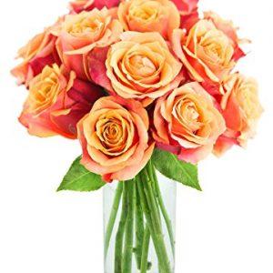 Long-stemmed Orange Roses