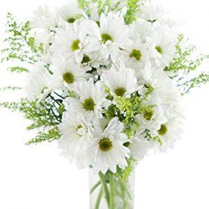 Bountiful Daisies Bouquet