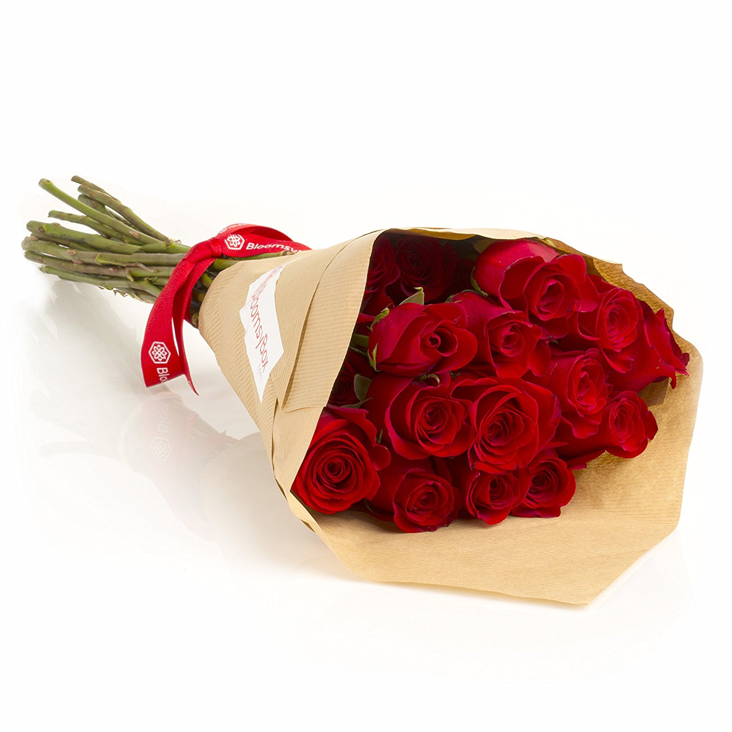 24 long stem red roses hand tied bouquet wf shopping 24 long stem red roses hand tied bouquet izmirmasajfo