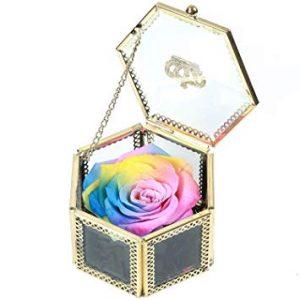 Rose Flowers Best Gift