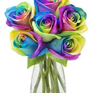 Fresh Cut Rainbow Rose Bouquet