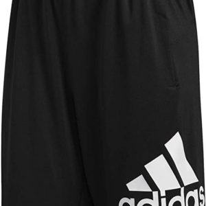 Sport 9-inch Short