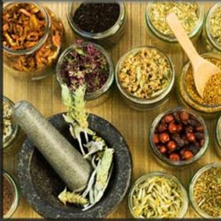 New Chinese herbal medicine has significant potential in treating hepatitis C: A Study
