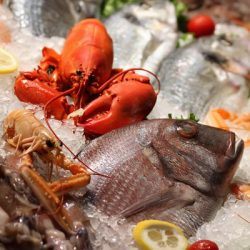 Neurotoxin found in commercial seafood: A Swedish Study
