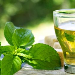Compound in green tea found to block rheumatoid arthritis