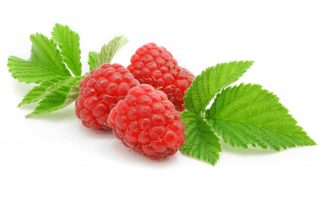 raspberry-leaf
