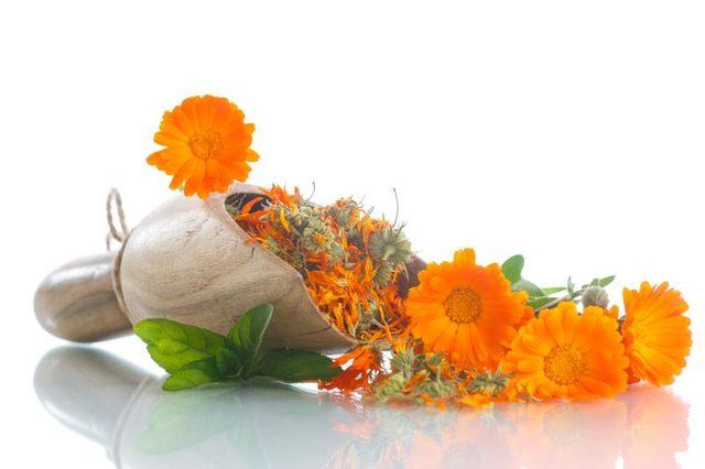 Skin Healing Benefits of Calendula