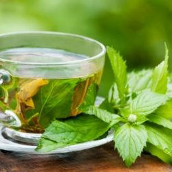 Top 10 Herbs That Enhance Cervical Health