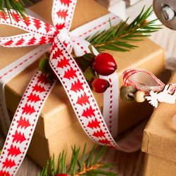Top 10 Christmas Gift Ideas for 2016