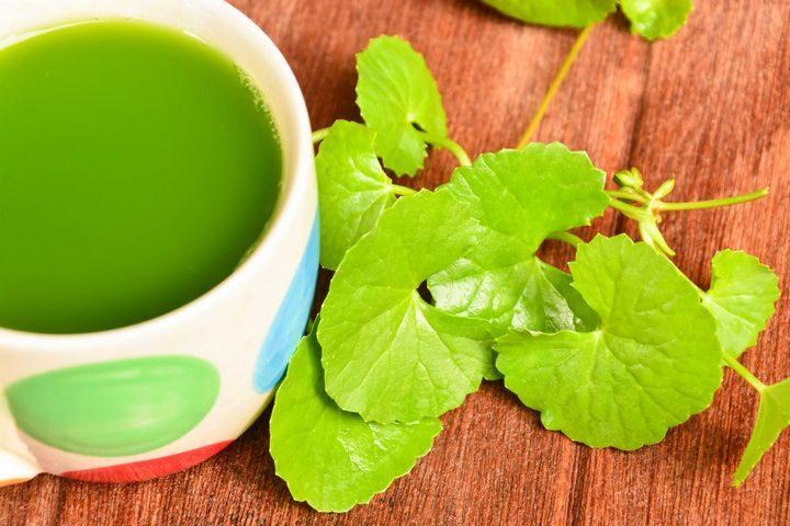 Herbs for Mental Energy