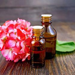 Health Benefits of Geranium: King of Herbs