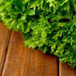 Herbs to Prevent Colorectal Cancer