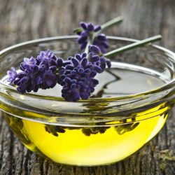Lavender Oil: A Bulgarian Gift To The World