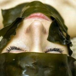 Algae: The Secret Beauty Weapon of the Year