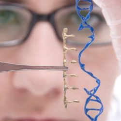 Gene therapy via skin could treat many diseases, even obesity