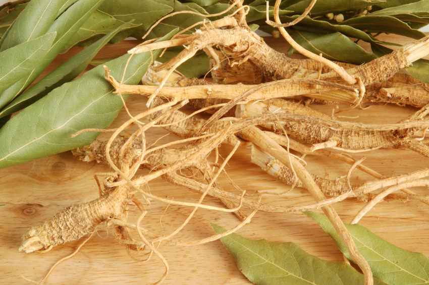 Herbal Options To Manage PCOS