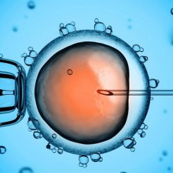 Does timing of IVF to avoid weekend procedures affects pregnancy success?