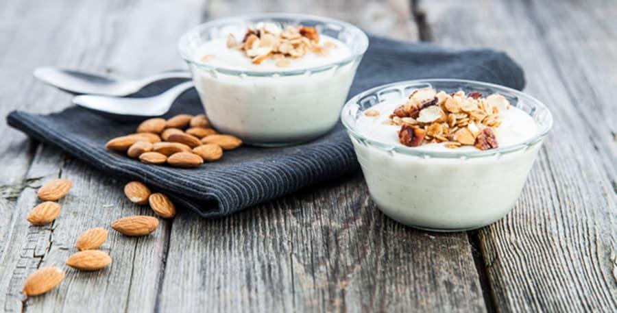 Homemade-Dairy-Free-Yogurt
