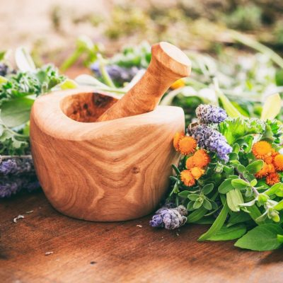 Herbs for a Better Bone Health