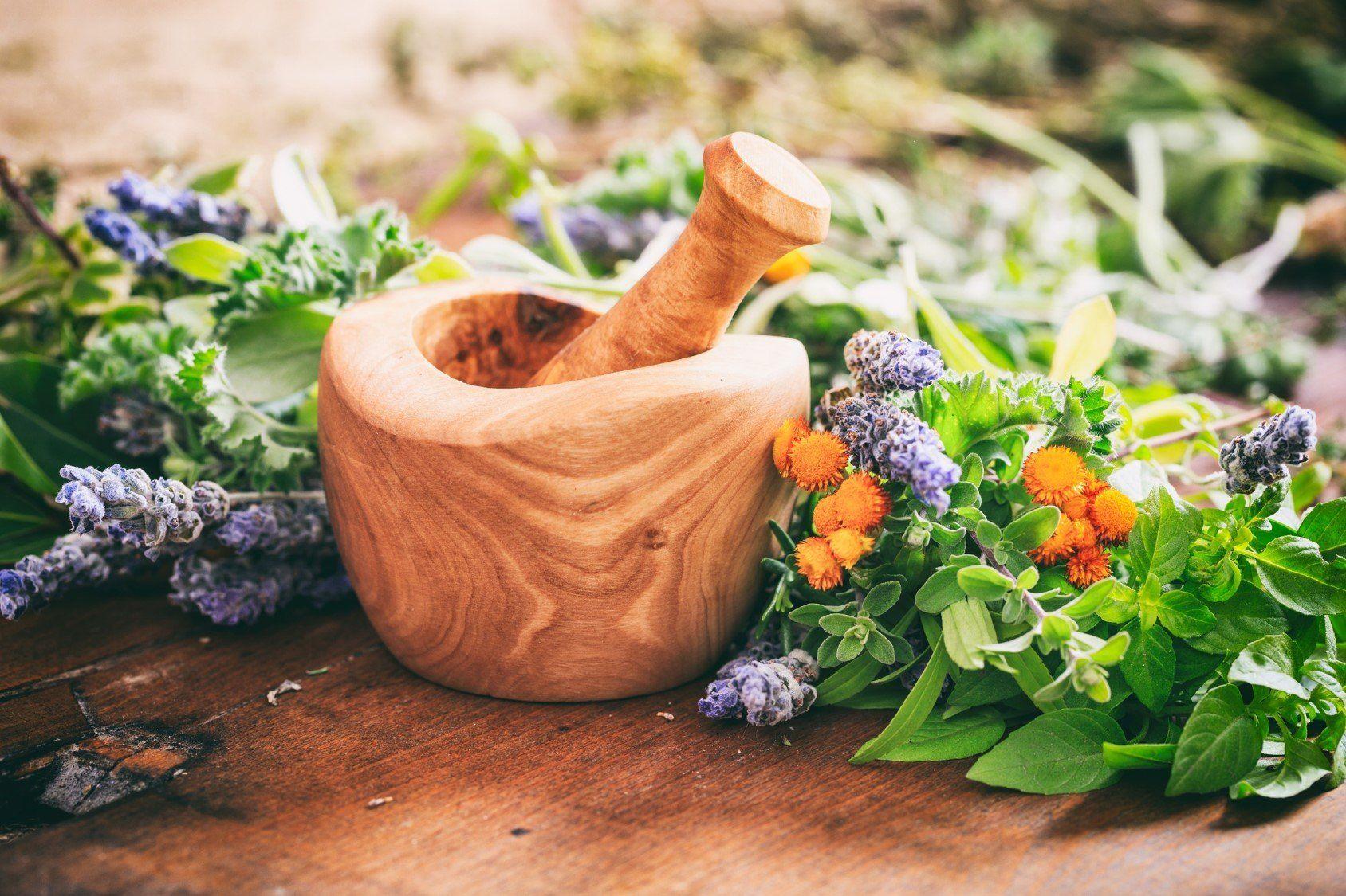 Herbs for a Better Bone Health