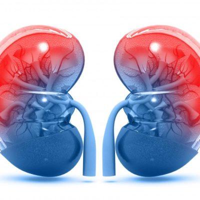 kidney_disease