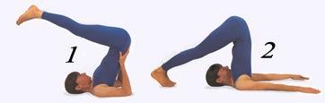 yog  asanas  exercises